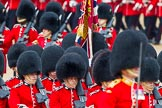 The Colonel's Review 2014. Horse Guards Parade, Westminster, London,  United Kingdom, on 07 June 2014 at 11:43, image #545