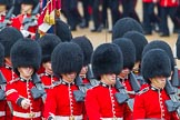 The Colonel's Review 2014. Horse Guards Parade, Westminster, London,  United Kingdom, on 07 June 2014 at 11:43, image #546