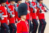 The Colonel's Review 2014. Horse Guards Parade, Westminster, London,  United Kingdom, on 07 June 2014 at 11:43, image #548