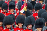 The Colonel's Review 2014. Horse Guards Parade, Westminster, London,  United Kingdom, on 07 June 2014 at 11:43, image #550