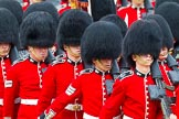 The Colonel's Review 2014. Horse Guards Parade, Westminster, London,  United Kingdom, on 07 June 2014 at 11:43, image #551