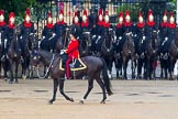 The Colonel's Review 2014. Horse Guards Parade, Westminster, London,  United Kingdom, on 07 June 2014 at 11:48, image #564