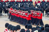 The Colonel's Review 2014. Horse Guards Parade, Westminster, London,  United Kingdom, on 07 June 2014 at 11:48, image #565