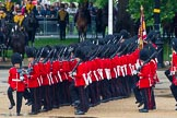 The Colonel's Review 2014. Horse Guards Parade, Westminster, London,  United Kingdom, on 07 June 2014 at 11:48, image #568