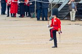 The Colonel's Review 2014. Horse Guards Parade, Westminster, London,  United Kingdom, on 07 June 2014 at 11:48, image #570