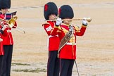 The Colonel's Review 2014. Horse Guards Parade, Westminster, London,  United Kingdom, on 07 June 2014 at 11:49, image #572