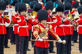 The Colonel's Review 2014. Horse Guards Parade, Westminster, London,  United Kingdom, on 07 June 2014 at 11:49, image #574
