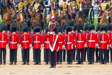 The Colonel's Review 2014. Horse Guards Parade, Westminster, London,  United Kingdom, on 07 June 2014 at 11:50, image #577