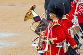 The Colonel's Review 2014. Horse Guards Parade, Westminster, London,  United Kingdom, on 07 June 2014 at 11:50, image #579
