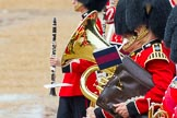 The Colonel's Review 2014. Horse Guards Parade, Westminster, London,  United Kingdom, on 07 June 2014 at 11:50, image #580