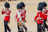The Colonel's Review 2014. Horse Guards Parade, Westminster, London,  United Kingdom, on 07 June 2014 at 11:50, image #582