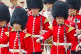 The Colonel's Review 2014. Horse Guards Parade, Westminster, London,  United Kingdom, on 07 June 2014 at 11:50, image #584