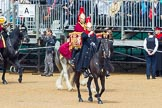 The Colonel's Review 2014. Horse Guards Parade, Westminster, London,  United Kingdom, on 07 June 2014 at 11:51, image #585