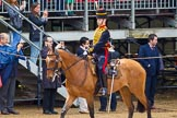 The Colonel's Review 2014. Horse Guards Parade, Westminster, London,  United Kingdom, on 07 June 2014 at 11:52, image #596