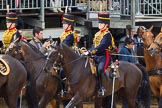 The Colonel's Review 2014. Horse Guards Parade, Westminster, London,  United Kingdom, on 07 June 2014 at 11:52, image #598