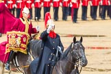 The Colonel's Review 2014. Horse Guards Parade, Westminster, London,  United Kingdom, on 07 June 2014 at 11:52, image #599