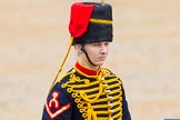 The Colonel's Review 2014. Horse Guards Parade, Westminster, London,  United Kingdom, on 07 June 2014 at 11:53, image #616