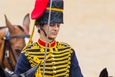 The Colonel's Review 2014. Horse Guards Parade, Westminster, London,  United Kingdom, on 07 June 2014 at 11:53, image #617