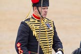 The Colonel's Review 2014. Horse Guards Parade, Westminster, London,  United Kingdom, on 07 June 2014 at 11:54, image #618