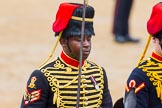 The Colonel's Review 2014. Horse Guards Parade, Westminster, London,  United Kingdom, on 07 June 2014 at 11:54, image #619