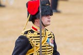 The Colonel's Review 2014. Horse Guards Parade, Westminster, London,  United Kingdom, on 07 June 2014 at 11:54, image #620
