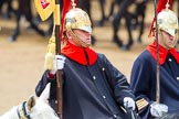 The Colonel's Review 2014. Horse Guards Parade, Westminster, London,  United Kingdom, on 07 June 2014 at 11:54, image #623