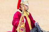 The Colonel's Review 2014. Horse Guards Parade, Westminster, London,  United Kingdom, on 07 June 2014 at 11:54, image #624