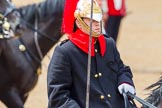 The Colonel's Review 2014. Horse Guards Parade, Westminster, London,  United Kingdom, on 07 June 2014 at 11:54, image #625