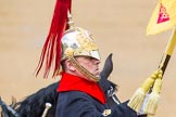 The Colonel's Review 2014. Horse Guards Parade, Westminster, London,  United Kingdom, on 07 June 2014 at 11:54, image #627