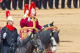The Colonel's Review 2014. Horse Guards Parade, Westminster, London,  United Kingdom, on 07 June 2014 at 11:56, image #636