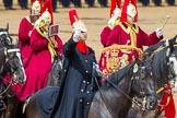 The Colonel's Review 2014. Horse Guards Parade, Westminster, London,  United Kingdom, on 07 June 2014 at 11:56, image #638