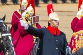 The Colonel's Review 2014. Horse Guards Parade, Westminster, London,  United Kingdom, on 07 June 2014 at 11:56, image #639
