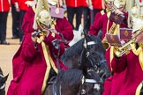 The Colonel's Review 2014. Horse Guards Parade, Westminster, London,  United Kingdom, on 07 June 2014 at 11:56, image #643
