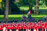 The Colonel's Review 2014. Horse Guards Parade, Westminster, London,  United Kingdom, on 07 June 2014 at 11:56, image #646