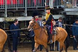 The Colonel's Review 2014. Horse Guards Parade, Westminster, London,  United Kingdom, on 07 June 2014 at 11:57, image #650