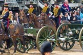 The Colonel's Review 2014. Horse Guards Parade, Westminster, London,  United Kingdom, on 07 June 2014 at 11:57, image #657