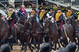 The Colonel's Review 2014. Horse Guards Parade, Westminster, London,  United Kingdom, on 07 June 2014 at 11:57, image #659