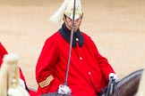 The Colonel's Review 2014. Horse Guards Parade, Westminster, London,  United Kingdom, on 07 June 2014 at 11:58, image #676