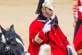 The Colonel's Review 2014. Horse Guards Parade, Westminster, London,  United Kingdom, on 07 June 2014 at 11:58, image #677