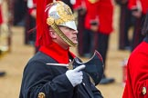 The Colonel's Review 2014. Horse Guards Parade, Westminster, London,  United Kingdom, on 07 June 2014 at 11:58, image #679