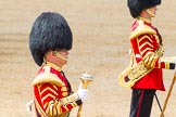 The Colonel's Review 2014. Horse Guards Parade, Westminster, London,  United Kingdom, on 07 June 2014 at 12:00, image #683