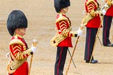 The Colonel's Review 2014. Horse Guards Parade, Westminster, London,  United Kingdom, on 07 June 2014 at 12:00, image #684