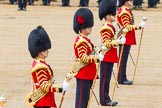 The Colonel's Review 2014. Horse Guards Parade, Westminster, London,  United Kingdom, on 07 June 2014 at 12:00, image #685