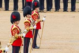 The Colonel's Review 2014. Horse Guards Parade, Westminster, London,  United Kingdom, on 07 June 2014 at 12:00, image #686