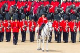 The Colonel's Review 2014. Horse Guards Parade, Westminster, London,  United Kingdom, on 07 June 2014 at 12:01, image #689