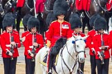 The Colonel's Review 2014. Horse Guards Parade, Westminster, London,  United Kingdom, on 07 June 2014 at 12:01, image #690