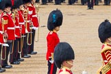 The Colonel's Review 2014. Horse Guards Parade, Westminster, London,  United Kingdom, on 07 June 2014 at 12:01, image #691