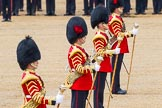 The Colonel's Review 2014. Horse Guards Parade, Westminster, London,  United Kingdom, on 07 June 2014 at 12:01, image #692
