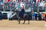 The Colonel's Review 2014. Horse Guards Parade, Westminster, London,  United Kingdom, on 07 June 2014 at 12:02, image #693