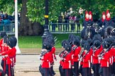 The Colonel's Review 2014. Horse Guards Parade, Westminster, London,  United Kingdom, on 07 June 2014 at 12:04, image #698